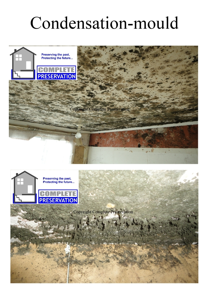 CONDENSATION AND MOULD JPEG