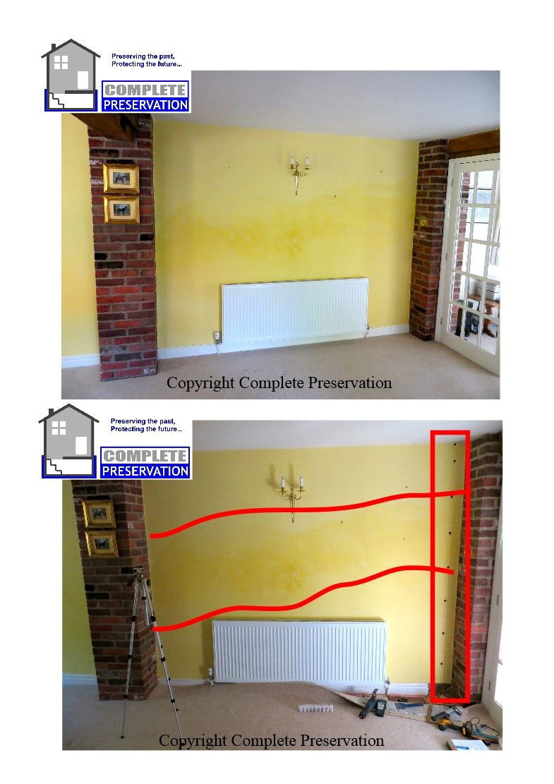 RICS RISING DAMP AND PROFILE