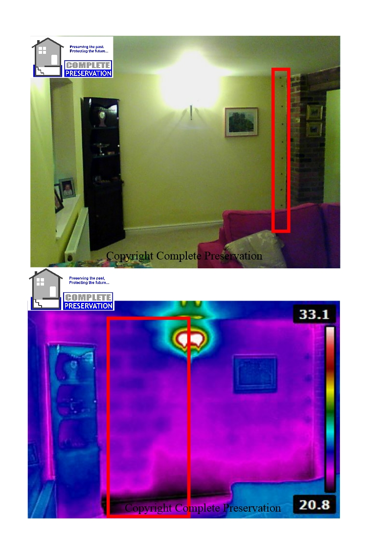 RICS THERMALIMAGING PICTURE