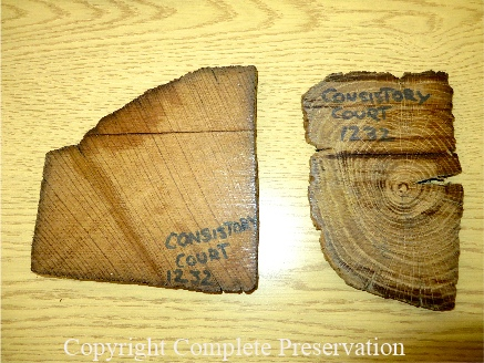 JOE BISPHAM TIMBER SAMPLE 2