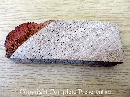 JOE BISPHAM TIMBER SAMPLE