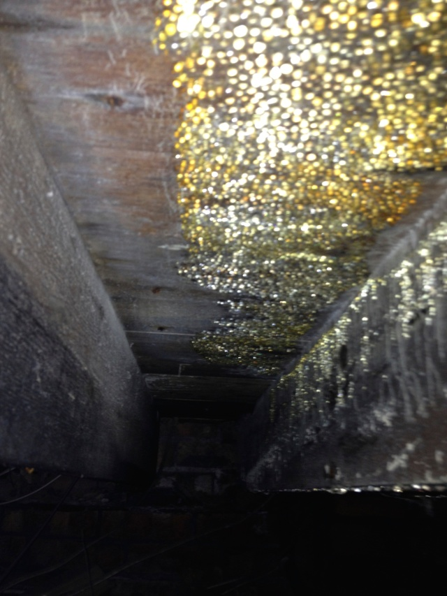 wet rot in a suspended timber floor