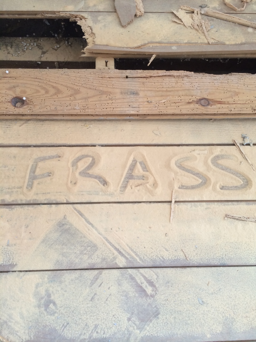 active woodworm frass
